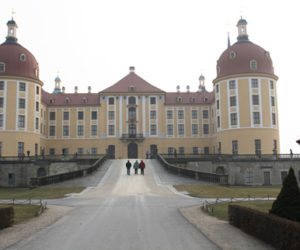 Allee Moritzburg